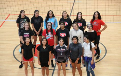 Volleyball claims 6A region 2 title after beating Hunter